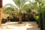 Rent villa in Arabian Ranches